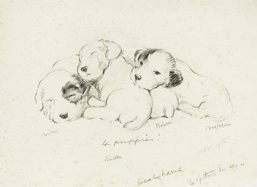 Art Prints of Four Puppies by Lucy Dawson