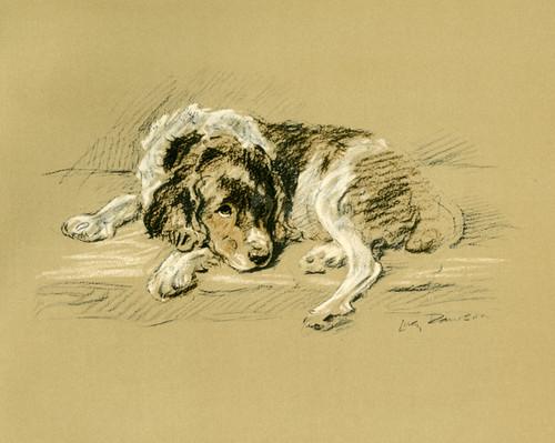 Art Prints of Jane 2 by Lucy Dawson