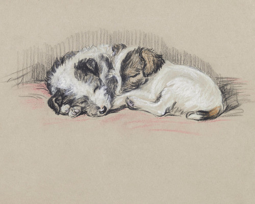 Art Prints of Mike and Jim, Wire Haired Terrier Puppies by Lucy Dawson