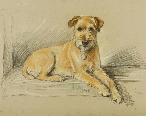 Art Prints of Mr. Tailwagger, Irish Terrier by Lucy Dawson