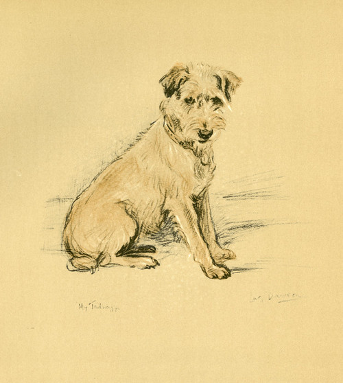 Art Prints of My Tailwagger by Lucy Dawson