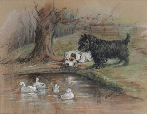 Art Prints of Out of Reach, Sealyham Puppy and Scottie by a Duck Pond by Lucy Dawson