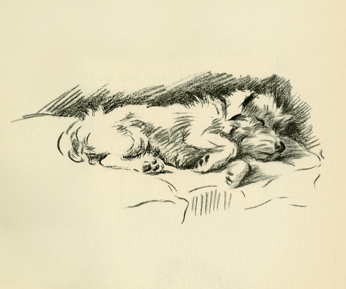 Art Prints of Patch after Three Days of Rabbit Hunting by Lucy Dawson