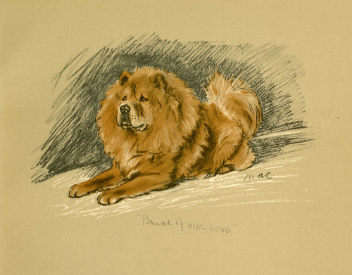 Art Prints of Red Prince of Wu Sung, Chow Chow, 2 by Lucy Dawson