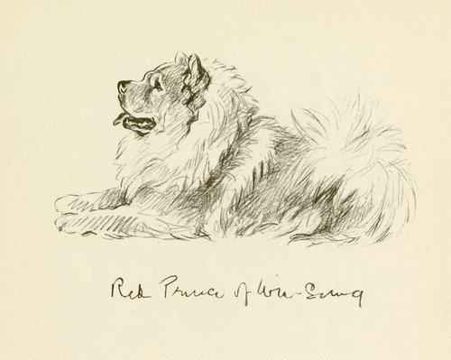 Art Prints of Red Prince of Wu Sung, Chow Chow, 3 by Lucy Dawson