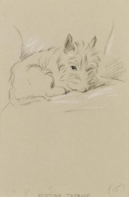 Art Prints of Scottish Terrier by Lucy Dawson