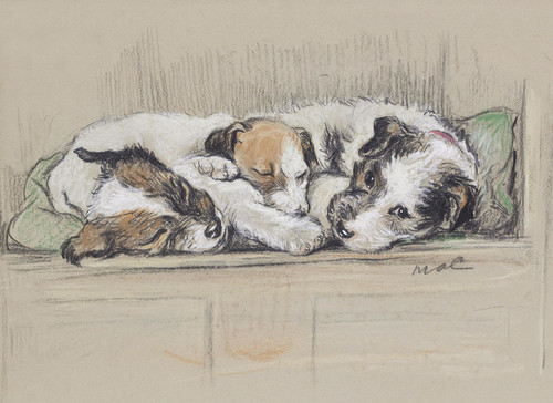 Art Prints of Study at Home, Three Puppies Lying in a Row by Lucy Dawson