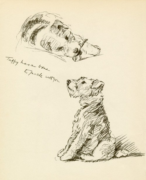 Art Prints of Taffy Has a Bone to Pick with You by Lucy Dawson