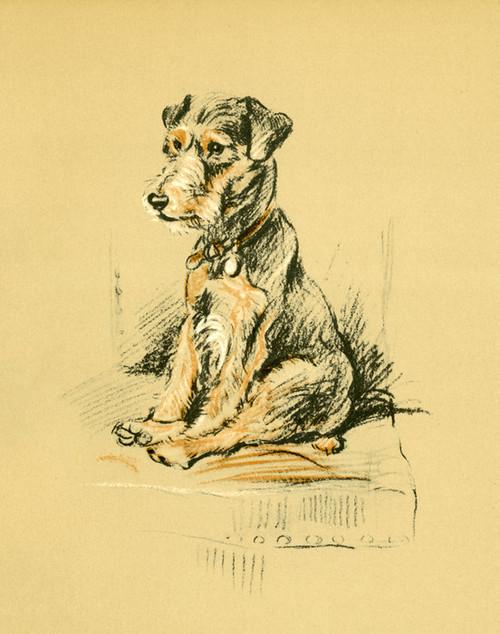 Art Prints of Trig 2 by Lucy Dawson