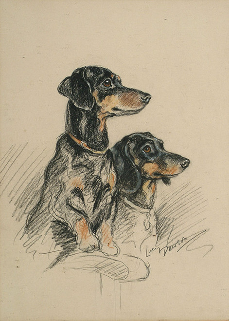 Art Prints of Two Dachshunds by Lucy Dawson