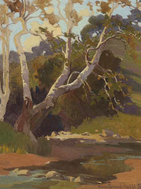 Art Prints of Sycamores by a Stream by Marion Kavanaugh Wachtel