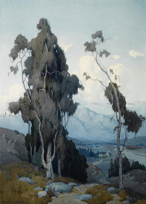 Art Prints of View into the Valley by Marion Kavanaugh Wachtel