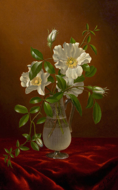 Art Prints of Cherokee Roses in a Glass by Martin Johnson Heade