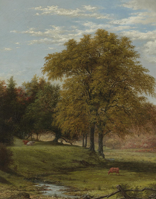 Art Prints of Cows in a Landscape by Martin Johnson Heade