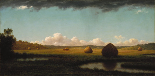 Art Prints of Summer Showers by Martin Johnson Heade