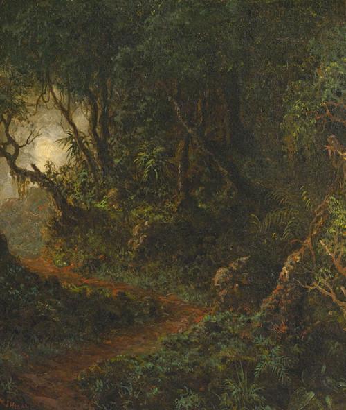 Art Prints of Tropical Greenery by Martin Johnson Heade