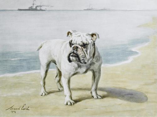 Art Prints of British Bulldog by Maud Earl