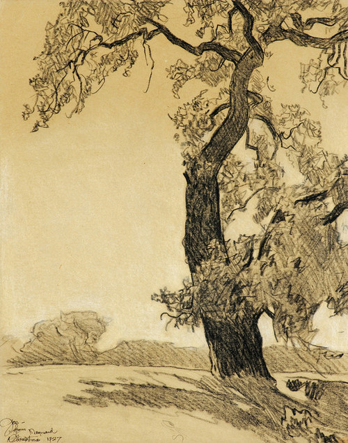 Art Prints of The Oak Tree by Maynard Dixon