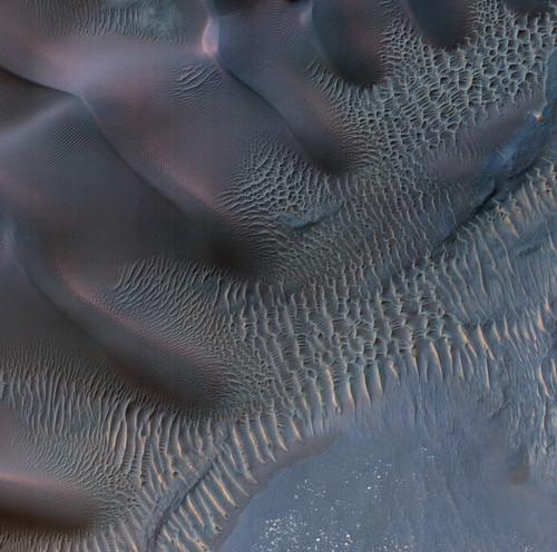 Art Prints of Dunes in Noachis Terra Region of Mars by NASA