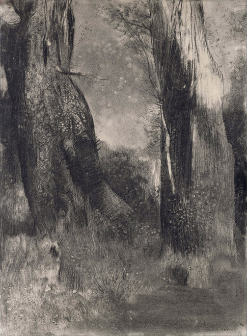 Art Prints of The Trees by Odilon Redon