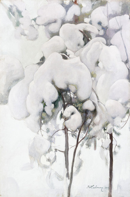 Art Prints of Snow Covered Pine Saplings by Pekka Halonen