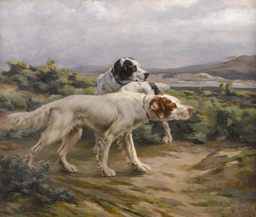 Art Prints of Leda and Another Setter in the Field by Percival Leonard Rosseau