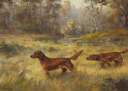 Art Prints of Irish Setters Pointing by Percival Leonard Rosseau