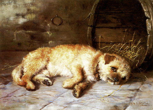 Art Prints of Home, a Border Terrier by Philip Eustace Stretton