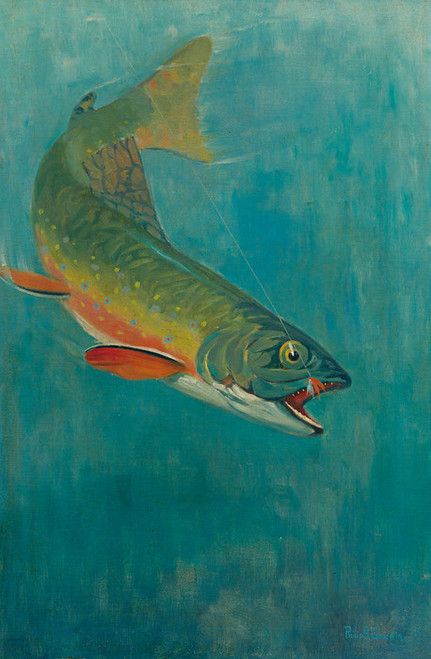 Art Prints of Catching the Bait by Philip Goodwin