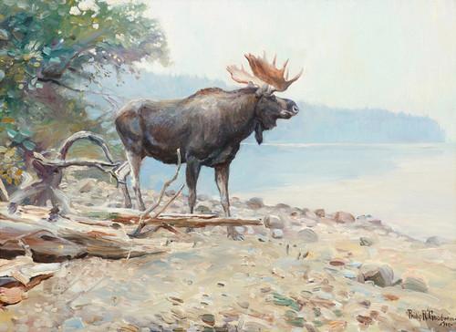 Art Prints of Moose at lake McDonald 1910 by Philip Goodwin
