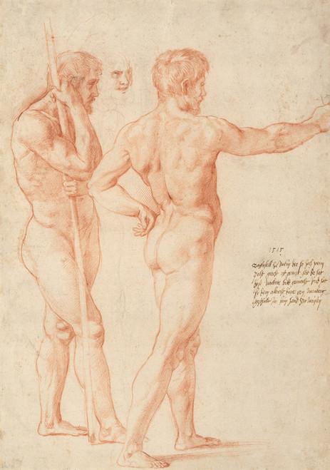 Art Prints of Nude Studies 1515 by Raphael Santi
