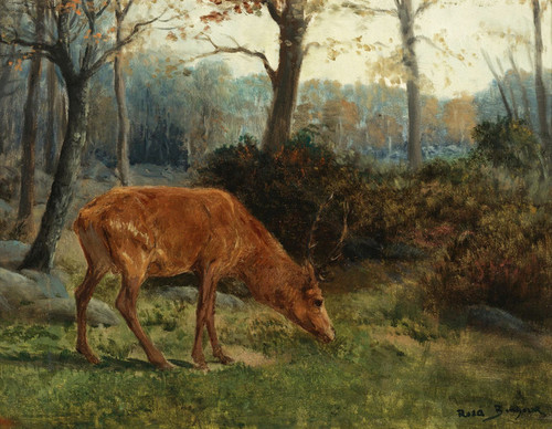 Art Prints of A Deer Grazing by Rosa Bonheur