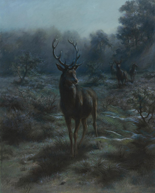 Art Prints of King of the Forest by Rosa Bonheur