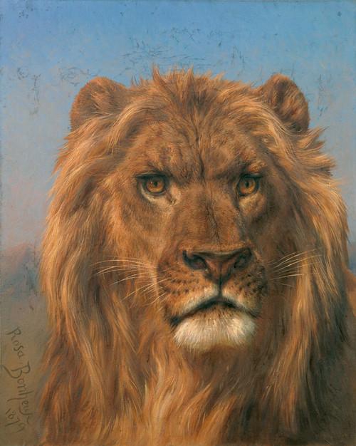 Art Prints of Portrait of a Lion by Rosa Bonheur