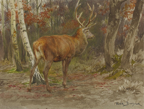 Art Prints of Stag on the Watch by Rosa Bonheur