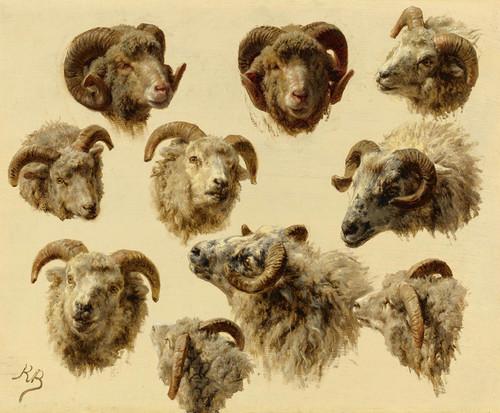 Art Prints of Study of Ram Heads by Rosa Bonheur