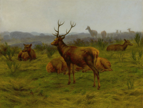 Art Prints of The Monarch of the Herd by Rosa Bonheur