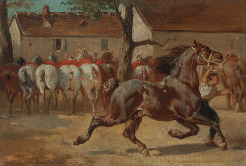 Art Prints of Trotting a Horse by Rosa Bonheur