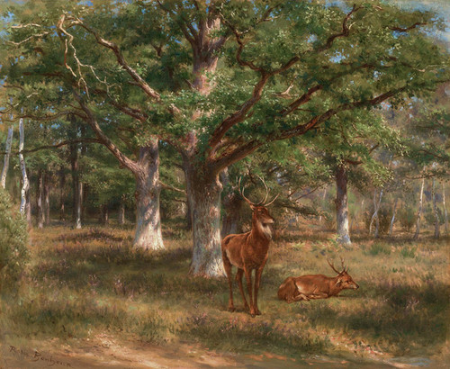 Art Prints of Two Deer in a Forest Glade by Rosa Bonheur