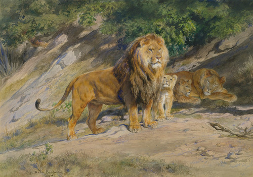 Art Prints of The King Watches 1887 by Rosa Bonheur