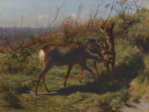 Art Prints of Two Young Deer by Rosa Bonheur