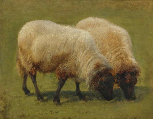 Art Prints of Two Black Faced Sheep Grazing by Rosa Bonheur