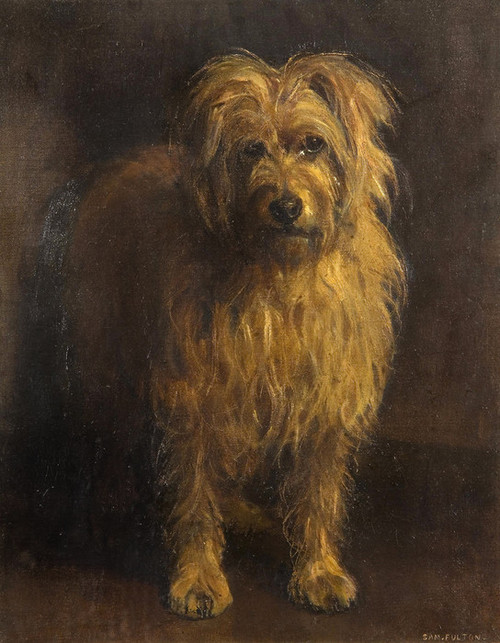 Art Prints of Monty, Skye Terrier by Samuel Fulton