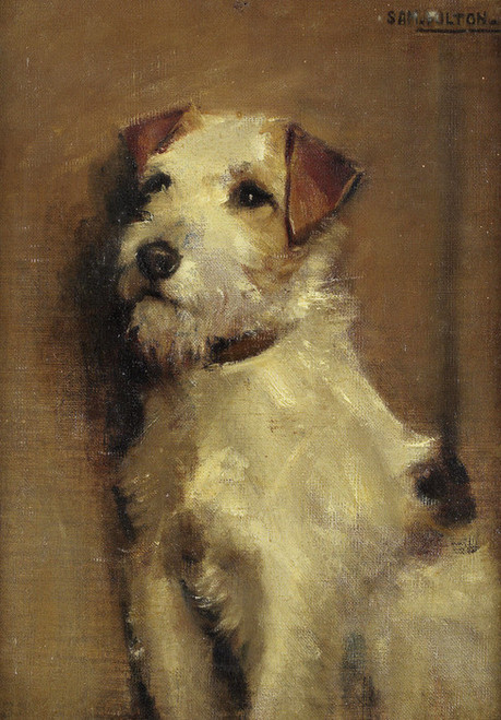 Art Prints of Seated Terrier by Samuel Fulton