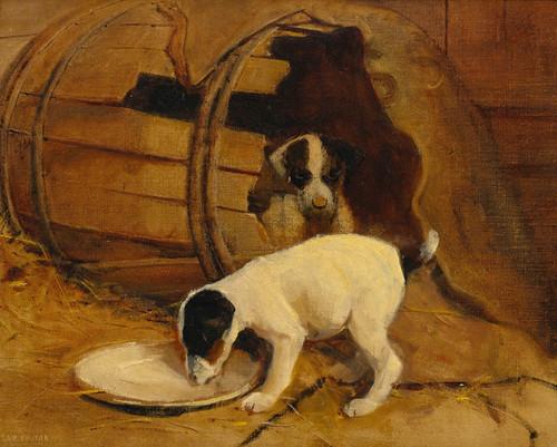 Art Prints of Puppies by Samuel Fulton