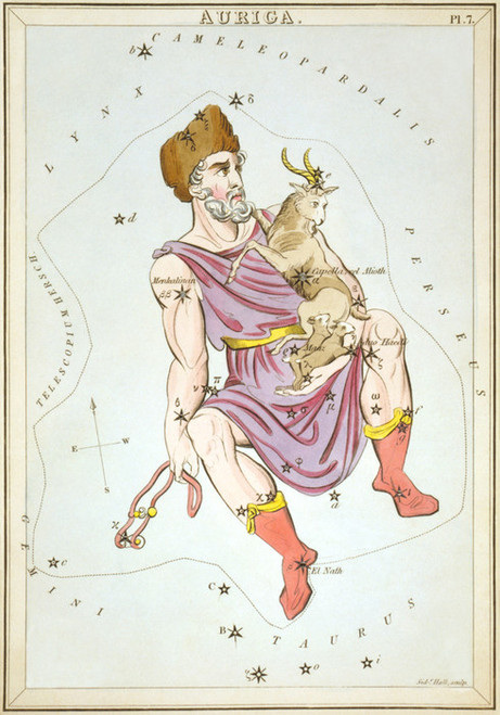Art Prints of Auriga, Plate 7, View of the Heavens by Sidney Hall