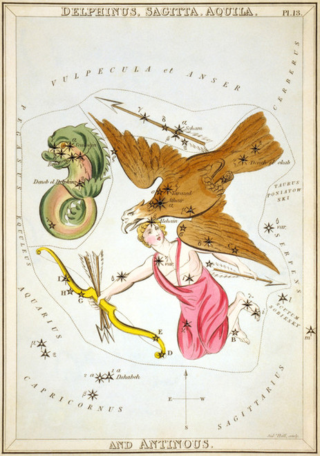 Art Prints of Delphinus, Plate 13, View of the Heavens by Sidney Hall