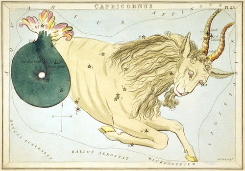 Art Prints of Capricorn, Plate 25, View of the Heavens by Sidney Hall