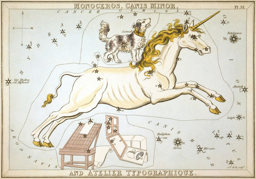 Art Prints of Canis Minor, Plate 31, View of the Heavens by Sidney Hall