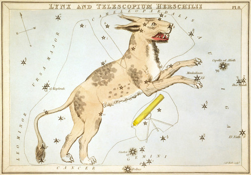 Art Prints of Lynx, Plate 8, View of the Heavens by Sidney Hall